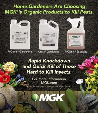 mgk-web-catagory.jpg