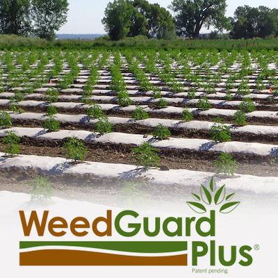 weedguard-plus-4-x-4-web.jpg